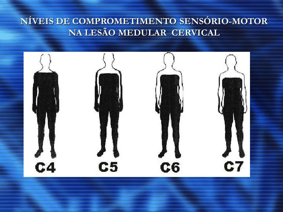 NÍVEIS DE COMPROMETIMENTO SENSÓRIO-MOTOR NA LESÃO MEDULAR CERVICAL