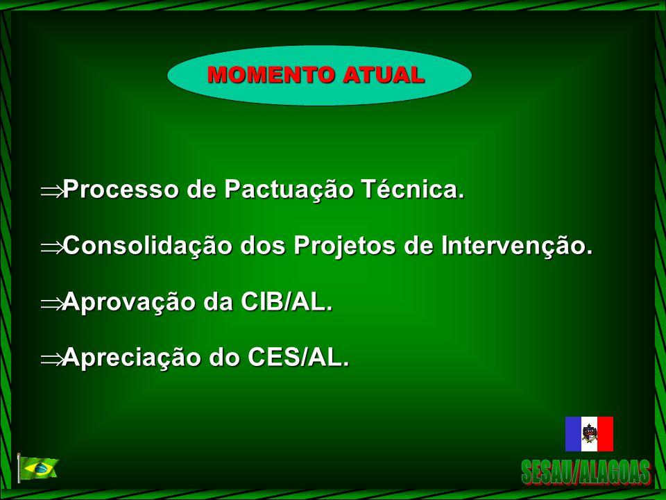 Processo de Pactuação Técnica.Processo de Pactuação Técnica.