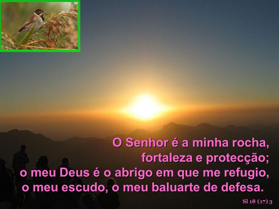 Tu, Senhor, cuidarás de nós e nos defenderás para sempre. Sl 12 (11) 8