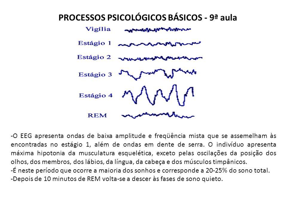 PROCESSOS PSICOLÓGICOS BÁSICOS - 9ª aula -O EEG apresenta ondas de baixa amplitude e freqüência mista que se assemelham às encontradas no estágio 1, além de ondas em dente de serra.