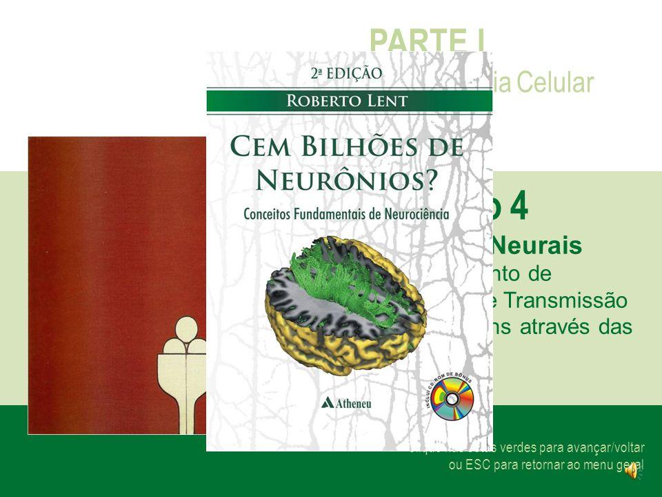 Clique nas setas verdes para avançar/voltar ou ESC para retornar ao menu geral PARTE I Neurociência Celular Capítulo 4 Os Chips Neurais Processamento de Informação e Transmissão de Mensagens através das Sinapses