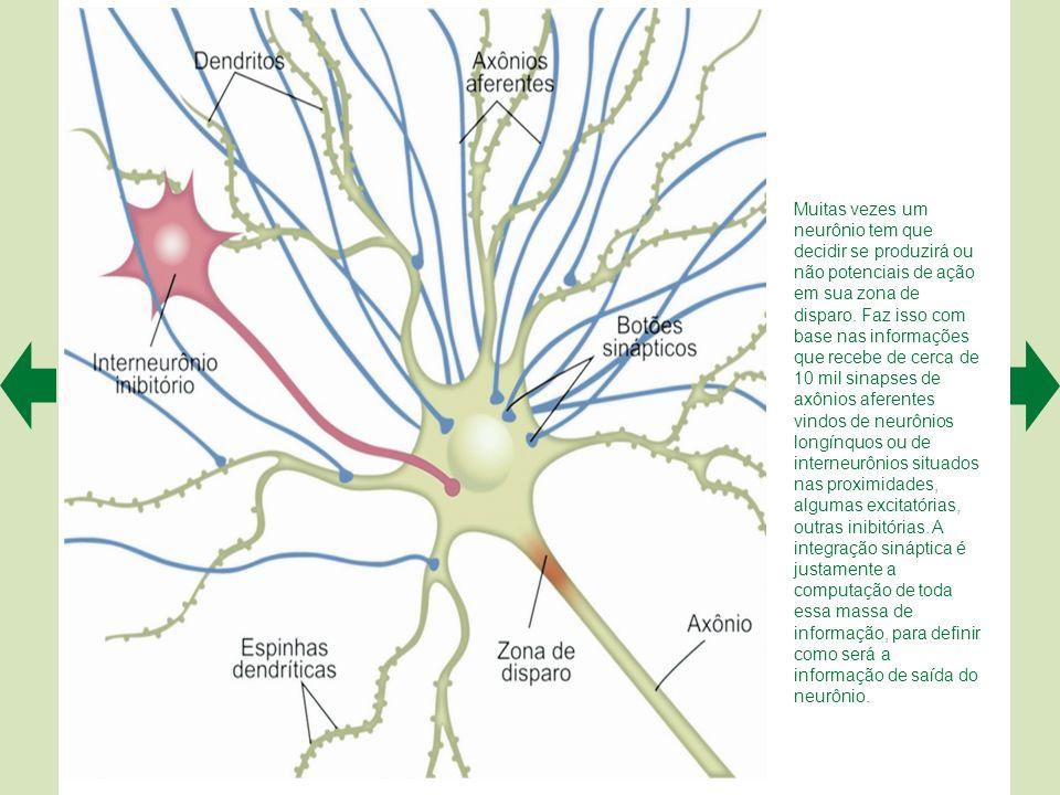 Muitas vezes um neurônio tem que decidir se produzirá ou não potenciais de ação em sua zona de disparo.