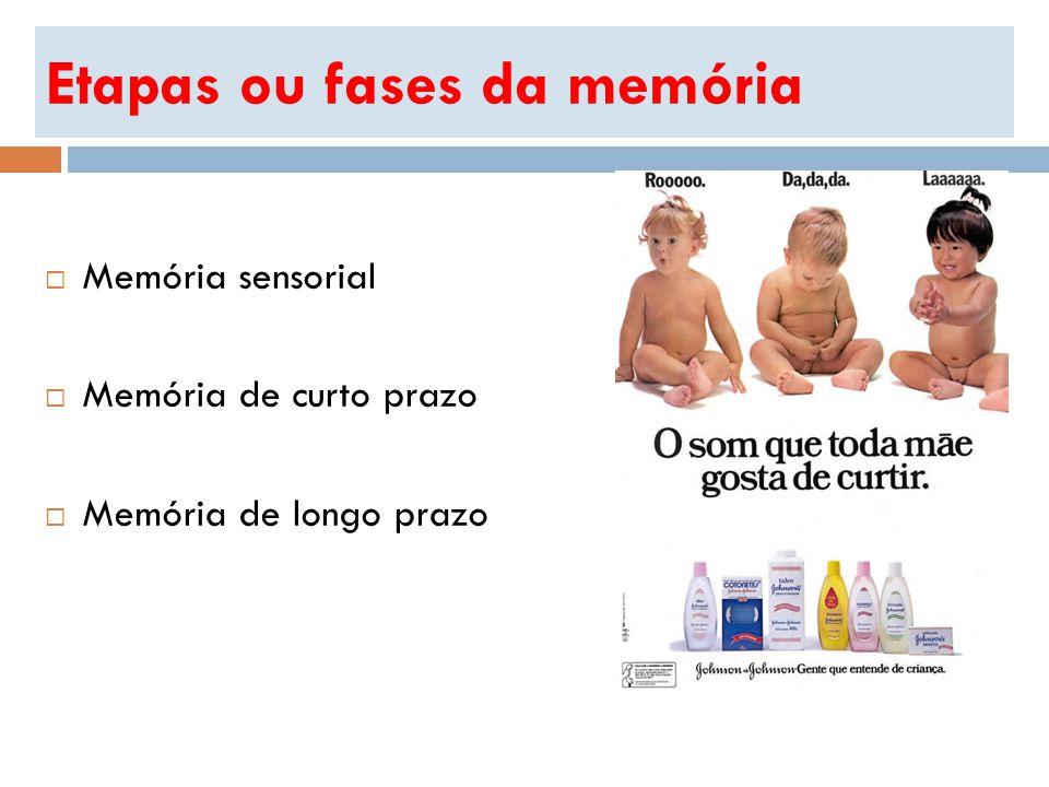 Etapas ou fases da memória Memória sensorial Memória de curto prazo Memória de longo prazo