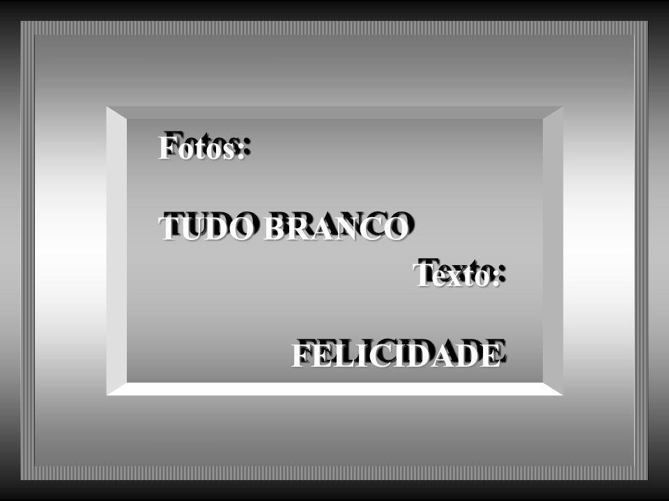 Fotos: TUDO BRANCO Fotos: TUDO BRANCO Texto:FELICIDADE Texto: FELICIDADE