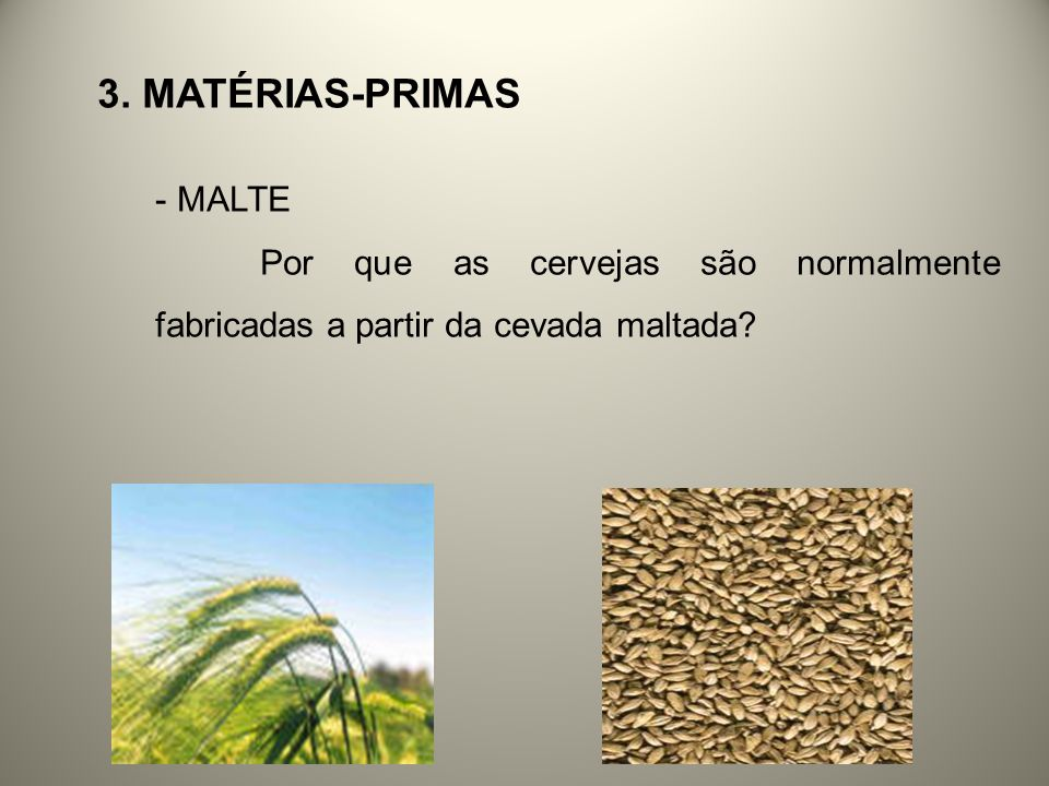3. MATÉRIAS-PRIMAS - MALTE Por que as cervejas são normalmente fabricadas a partir da cevada maltada?