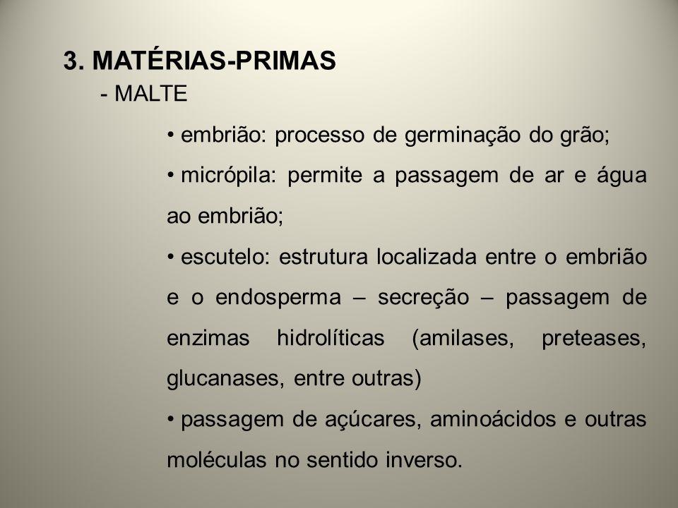 - MALTE embrião: processo de germinação do grão; micrópila: permite a passagem de ar e água ao embrião; escutelo: estrutura localizada entre o embrião