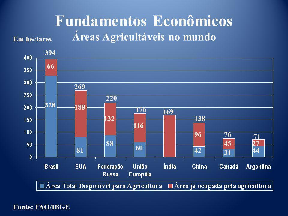 Fundamentos Econômicos Áreas Agricultáveis no mundo 394 328 188 269 176 220 169 138 76 71 66 81 132 88 116 60 42 96 45 31 44 27 Fonte: FAO/IBGE Em hec