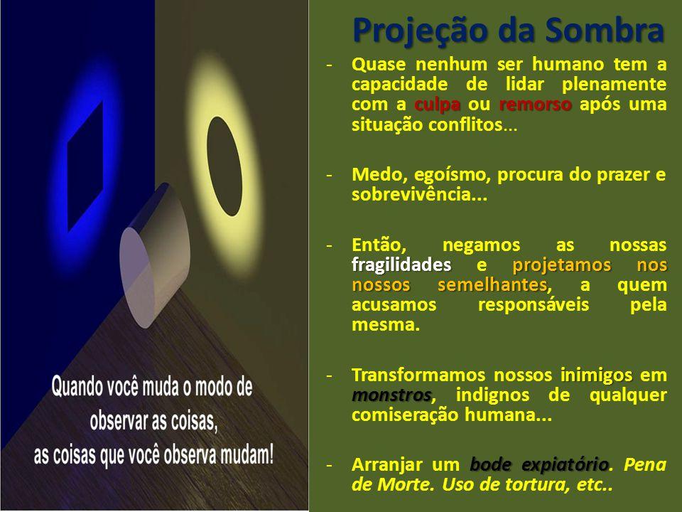 Projeção da Sombra culparemorso -Quase nenhum ser humano tem a capacidade de lidar plenamente com a culpa ou remorso após uma situação conflitos... -M