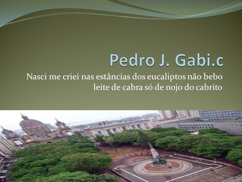 Porto Alegre tuas praias são mais belas tua cidade é mais lindas.