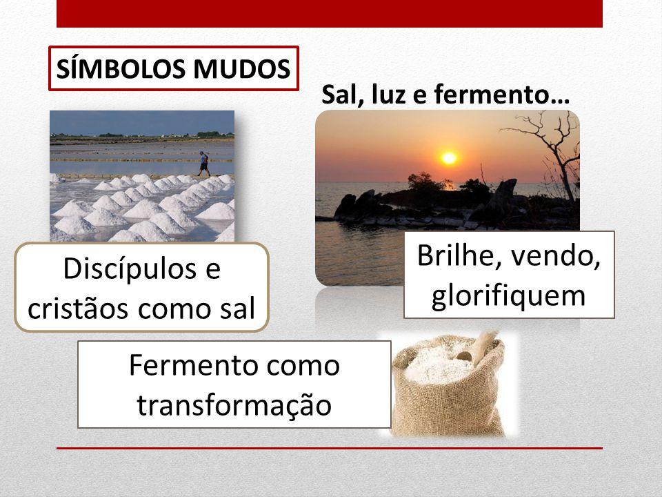 ESPIRITUALIDADE DO CORAÇÃO DE JESUS Santa Margarida Maria Alacoque… 1ª Aparição: muito preocupada.