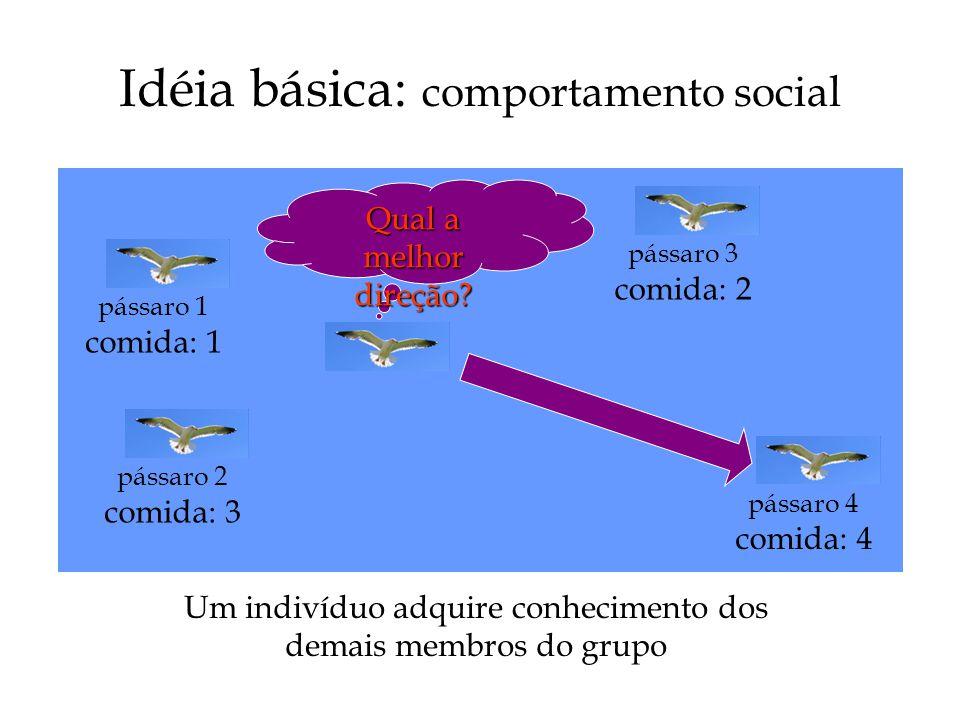 Idéia básica: comportamento social Um indivíduo adquire conhecimento dos demais membros do grupo Qual a melhor direção.