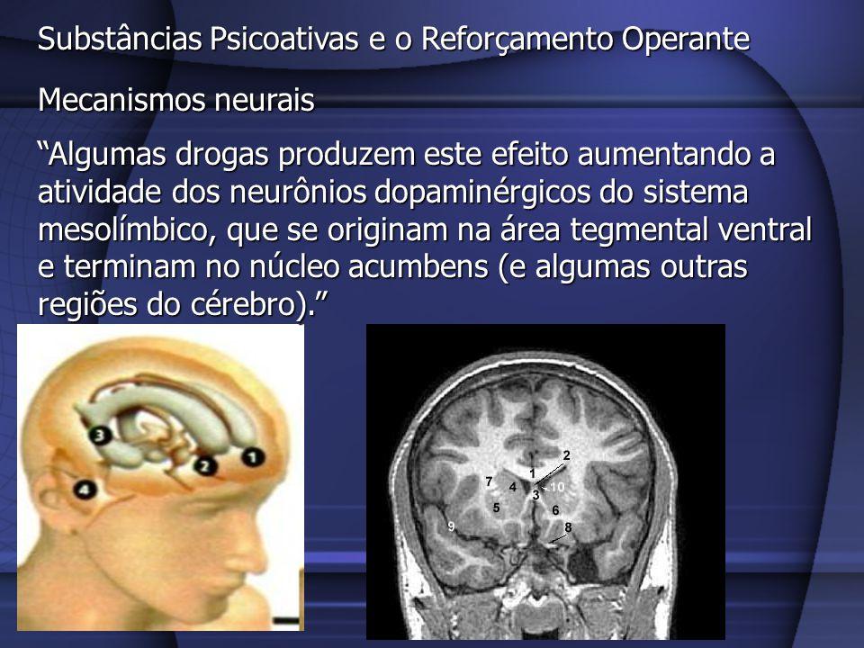 Substâncias Psicoativas e o Reforçamento Operante Mecanismos neurais Algumas drogas produzem este efeito aumentando a atividade dos neurônios dopaminé