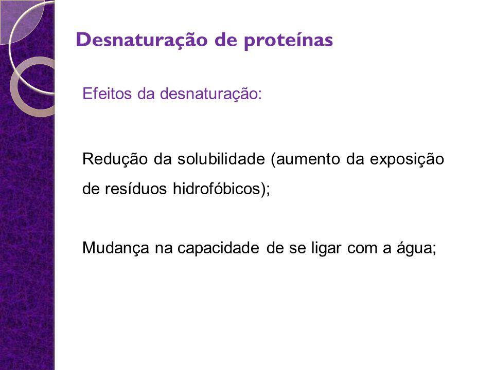 Desnaturação de proteínas Efeitos da desnaturação: Redução da solubilidade (aumento da exposição de resíduos hidrofóbicos); Mudança na capacidade de s