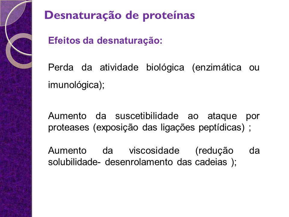 Desnaturação de proteínas Efeitos da desnaturação: Perda da atividade biológica (enzimática ou imunológica); Aumento da suscetibilidade ao ataque por