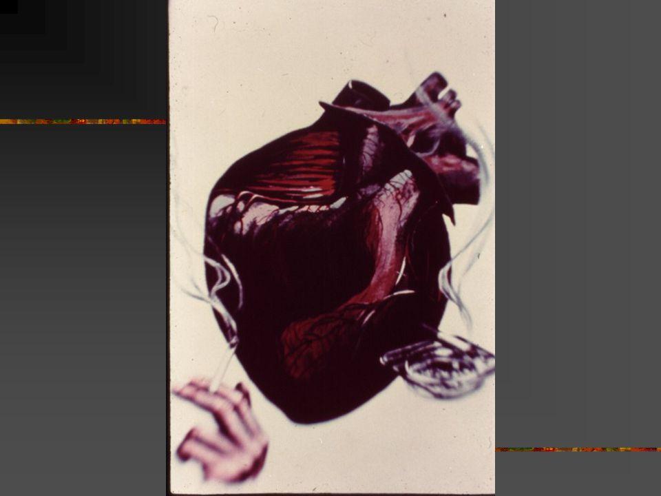 CORAÇÃO A NICOTINA faz com que a glândula supra- renal fabrique mais adrenalina, que provoca um aumento nos batimentos cardíacos aumentando o risco do