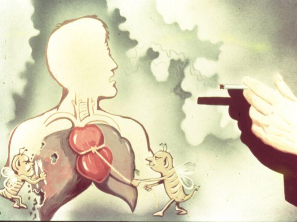 O CORAÇÃO DE UM FUMANTE BATE EM MÉDIA 10 A 20 VEZES A MAIS POR MINUTO DEPENDENDO DO NÚMERO DE CIGARRO FUMADO.
