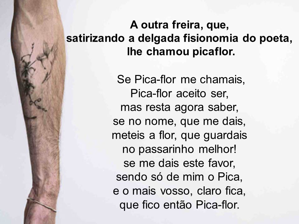 A outra freira, que, satirizando a delgada fisionomia do poeta, lhe chamou picaflor. Se Pica-flor me chamais, Pica-flor aceito ser, mas resta agora sa