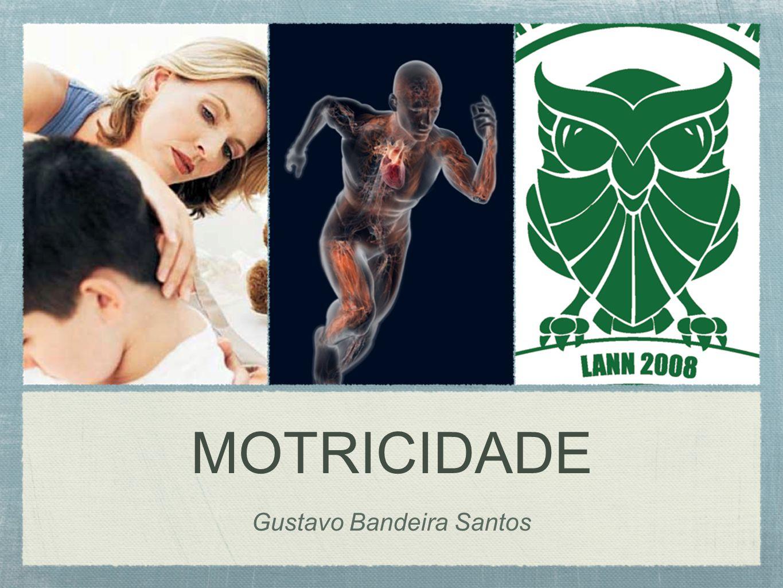 MOTRICIDADE Gustavo Bandeira Santos