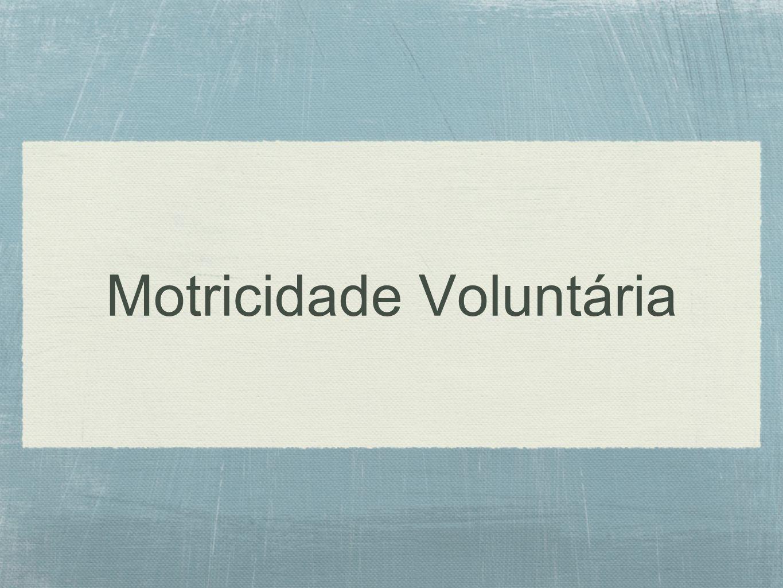 Motricidade Voluntária