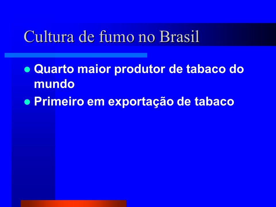 Cultura de fumo no Brasil Quarto maior produtor de tabaco do mundo Primeiro em exportação de tabaco