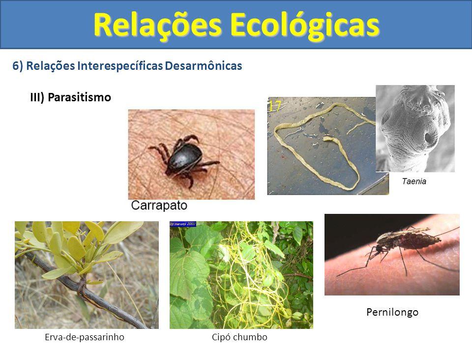 6) Relações Interespecíficas Desarmônicas III) Parasitismo Erva-de-passarinhoCipó chumbo Pernilongo Relações Ecológicas