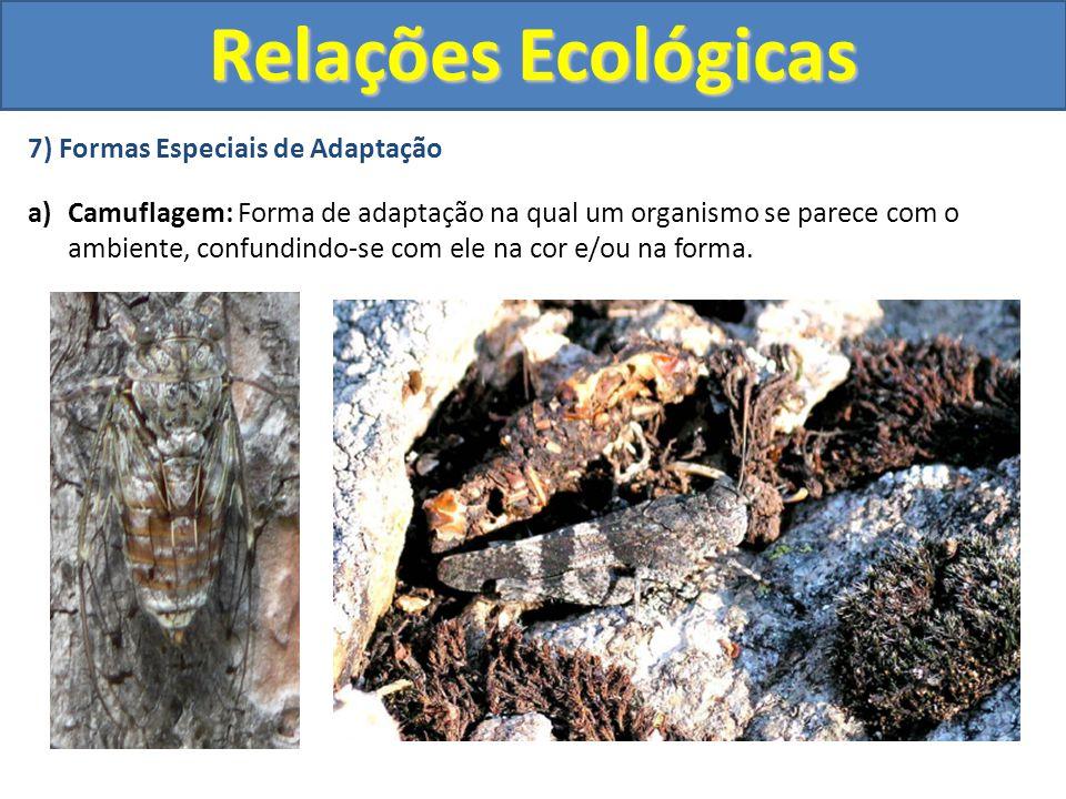 7) Formas Especiais de Adaptação a)Camuflagem: Forma de adaptação na qual um organismo se parece com o ambiente, confundindo-se com ele na cor e/ou na