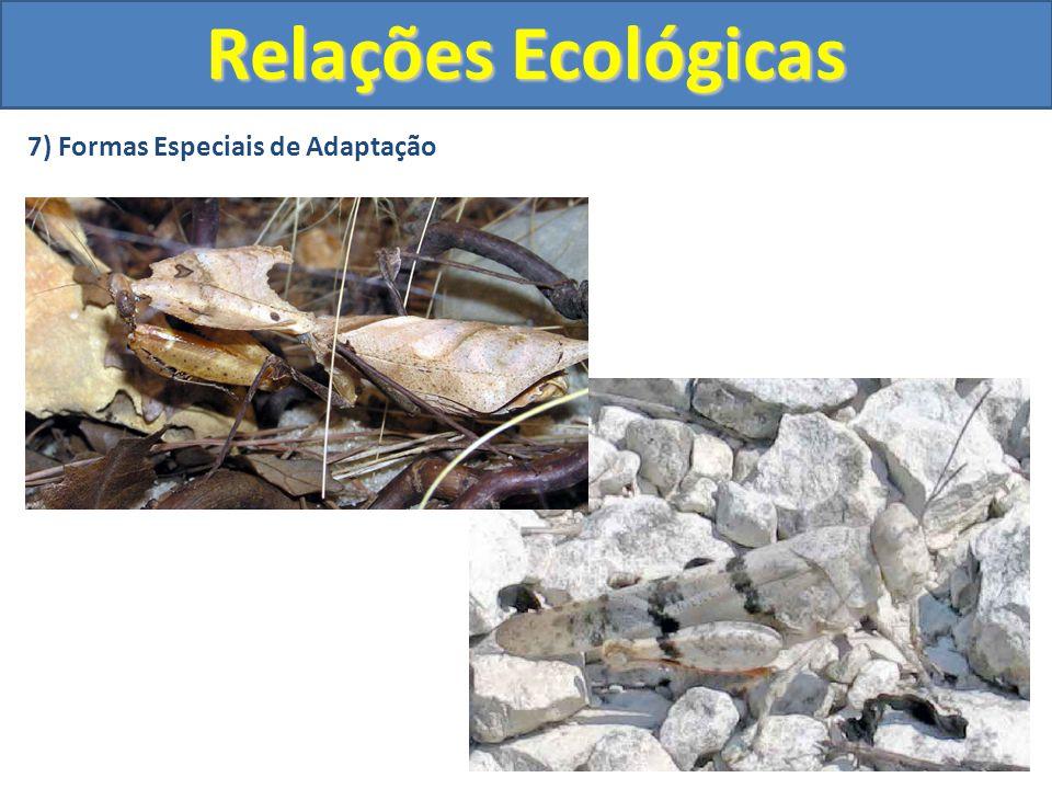 7) Formas Especiais de Adaptação Relações Ecológicas
