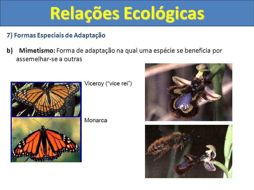 7) Formas Especiais de Adaptação b) Mimetismo: Forma de adaptação na qual uma espécie se beneficia por assemelhar-se a outras Relações Ecológicas