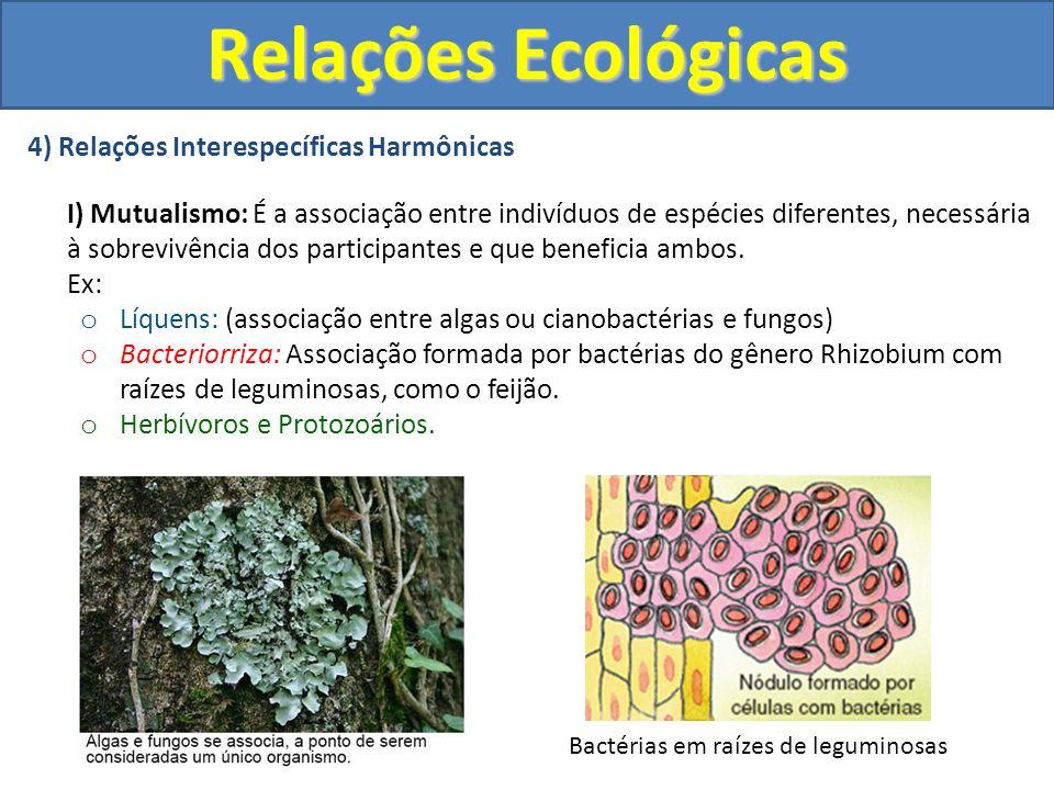4) Relações Interespecíficas Harmônicas I) Mutualismo: É a associação entre indivíduos de espécies diferentes, necessária à sobrevivência dos particip