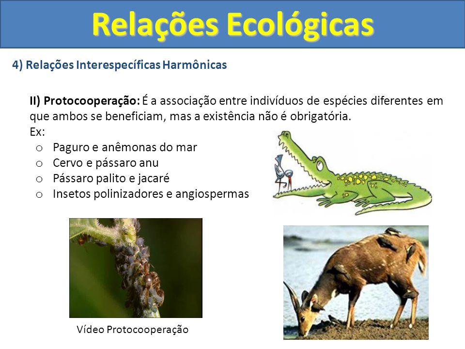 4) Relações Interespecíficas Harmônicas II) Protocooperação: É a associação entre indivíduos de espécies diferentes em que ambos se beneficiam, mas a