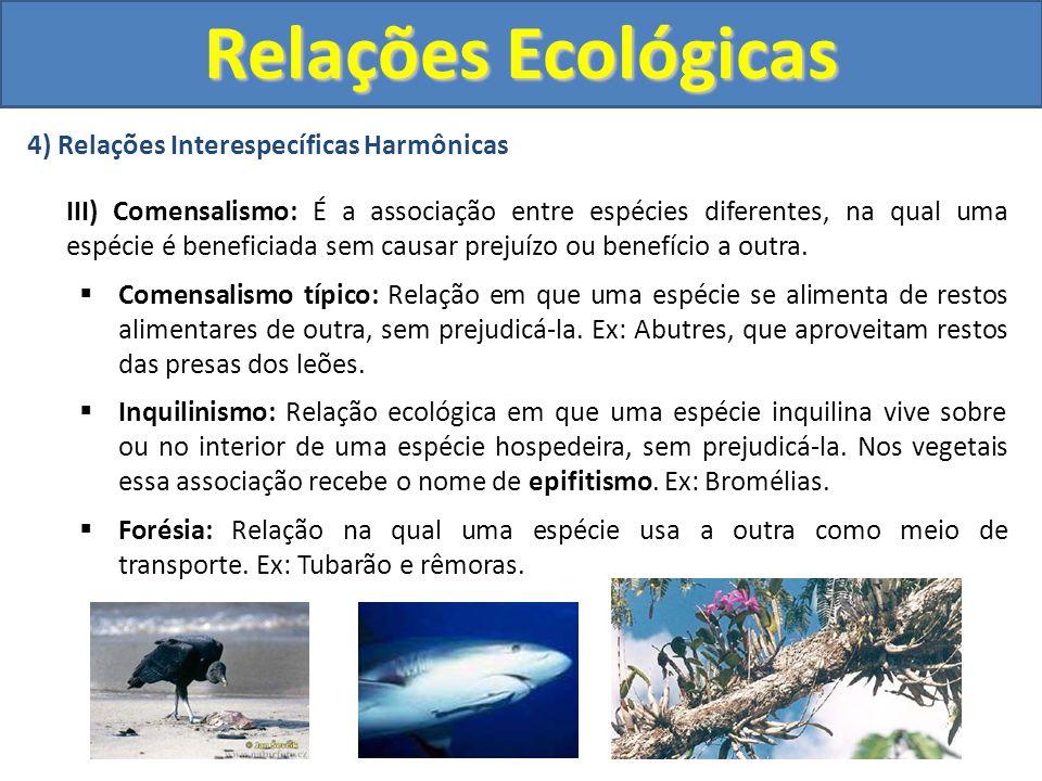 4) Relações Interespecíficas Harmônicas III) Comensalismo: É a associação entre espécies diferentes, na qual uma espécie é beneficiada sem causar prej