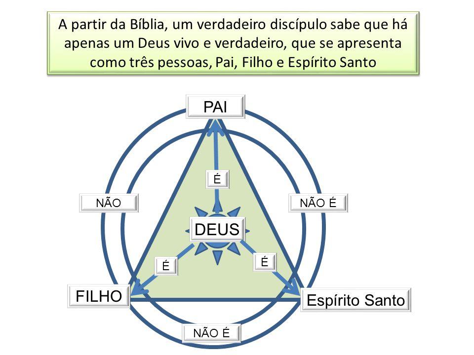 A partir da Bíblia, um verdadeiro discípulo sabe que há apenas um Deus vivo e verdadeiro, que se apresenta como três pessoas, Pai, Filho e Espírito Sa
