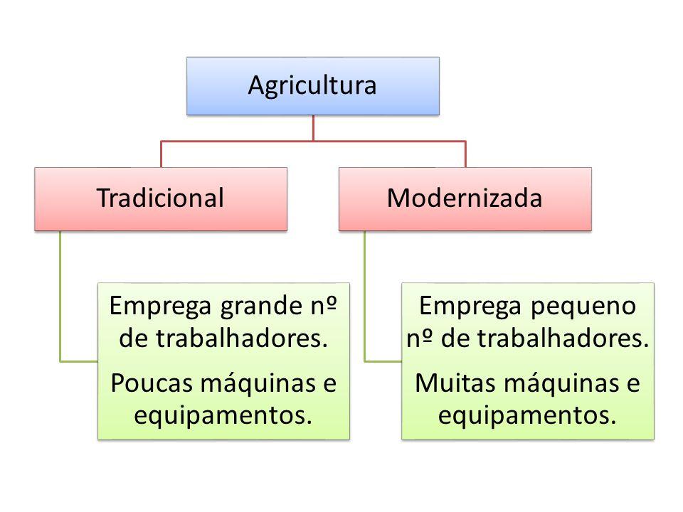 Agricultura Tradicional Emprega grande nº de trabalhadores.