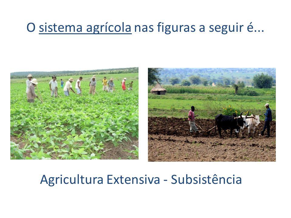 O sistema agrícola nas figuras a seguir é... Agricultura Extensiva - Subsistência