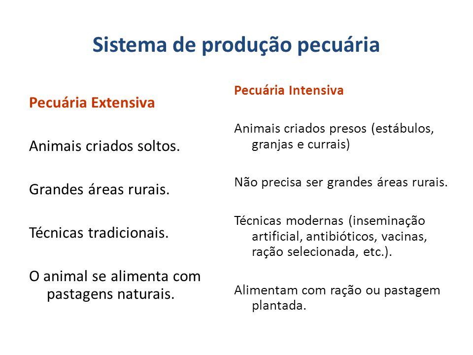 Sistema de produção pecuária Pecuária Extensiva Animais criados soltos.