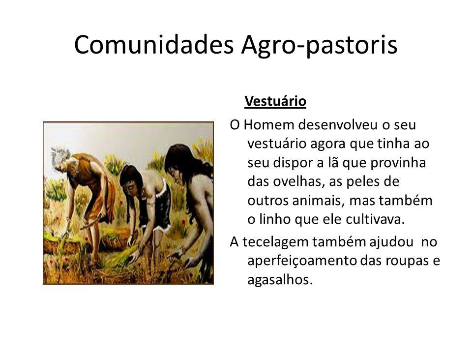 Comunidades Agro-pastoris Vestuário O Homem desenvolveu o seu vestuário agora que tinha ao seu dispor a lã que provinha das ovelhas, as peles de outro