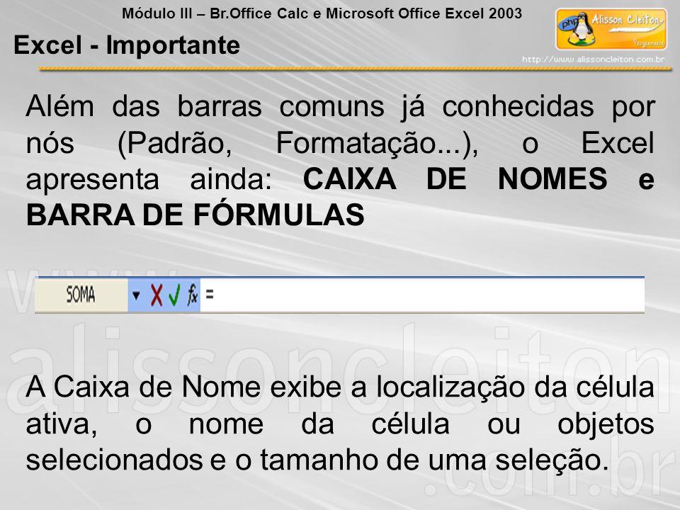 Além das barras comuns já conhecidas por nós (Padrão, Formatação...), o Excel apresenta ainda: CAIXA DE NOMES e BARRA DE FÓRMULAS A Caixa de Nome exib