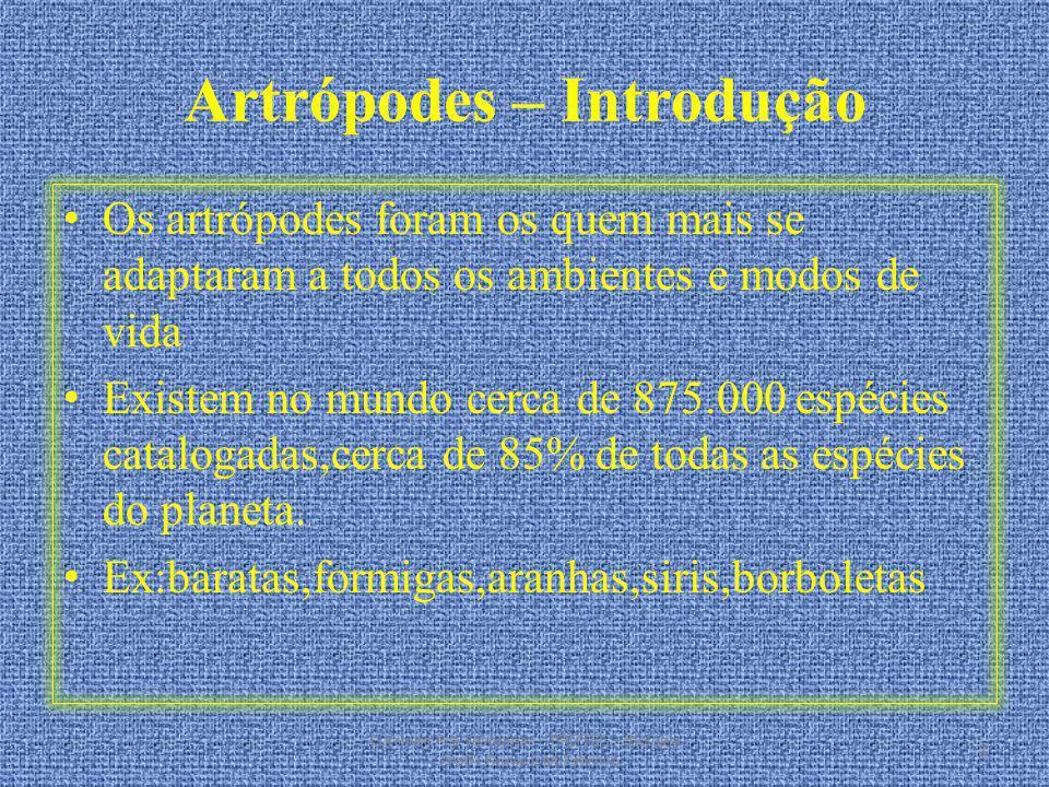 Artrópodes – Introdução Os artrópodes foram os quem mais se adaptaram a todos os ambientes e modos de vida Existem no mundo cerca de 875.000 espécies