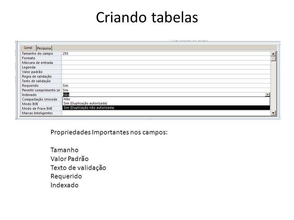 Criando tabelas Propriedades Importantes nos campos: Tamanho Valor Padrão Texto de validação Requerido Indexado