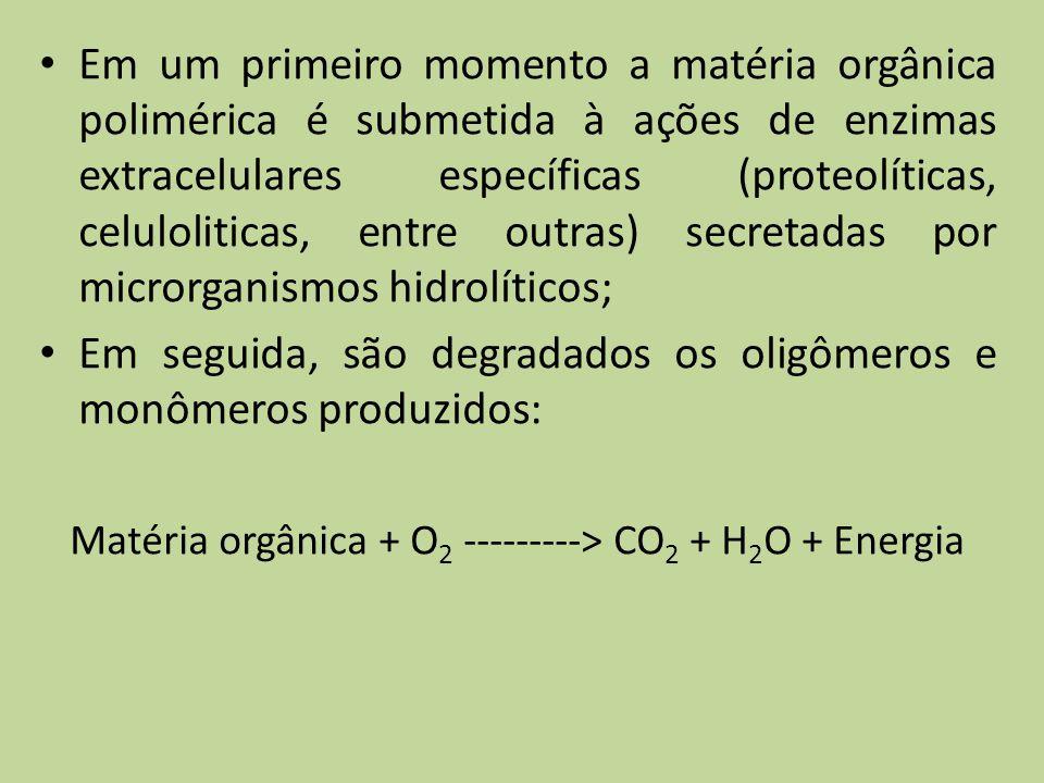 Em um primeiro momento a matéria orgânica polimérica é submetida à ações de enzimas extracelulares específicas (proteolíticas, celuloliticas, entre ou