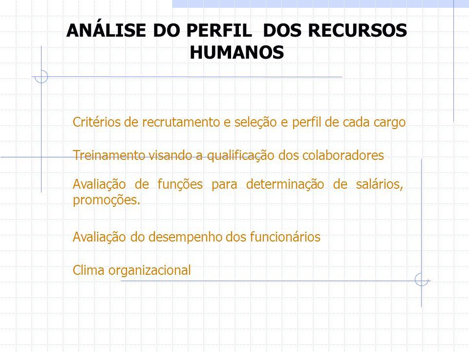 ANÁLISE DO PERFIL DOS RECURSOS HUMANOS Critérios de recrutamento e seleção e perfil de cada cargo Treinamento visando a qualificação dos colaboradores