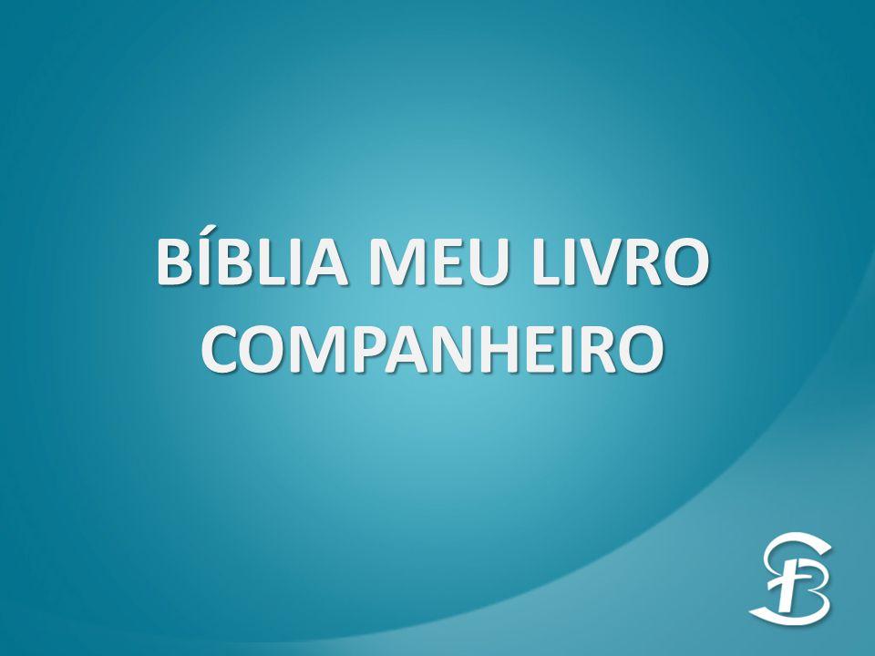 BÍBLIA MEU LIVRO COMPANHEIRO