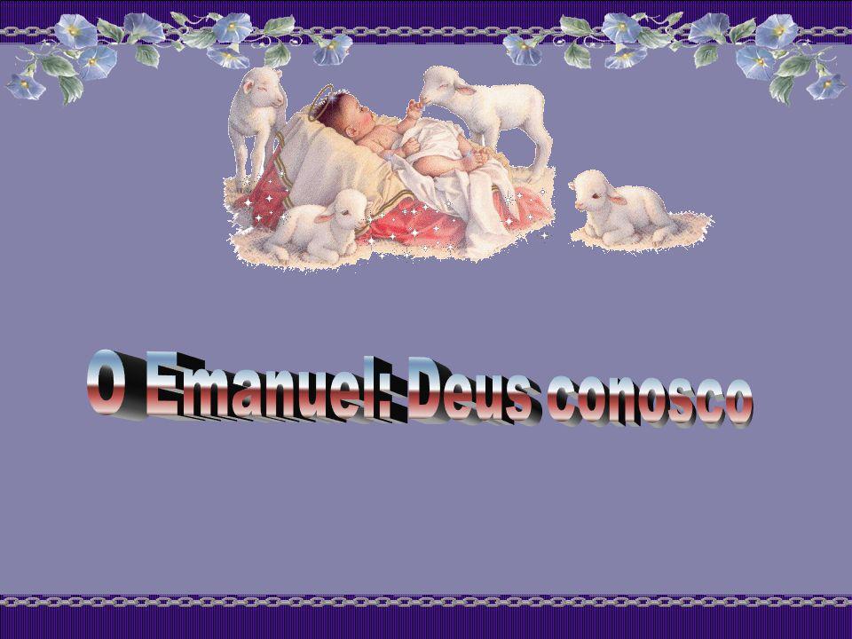 Em 29-11-1936, Santa Faustina nos descreve como a Mãe Santíssima a ensinava a se preparar para o Natal: Diário 785: A Mãe de Deus ensinou-me como devo preparar-me para a Festa do Santo Natal do Senhor.