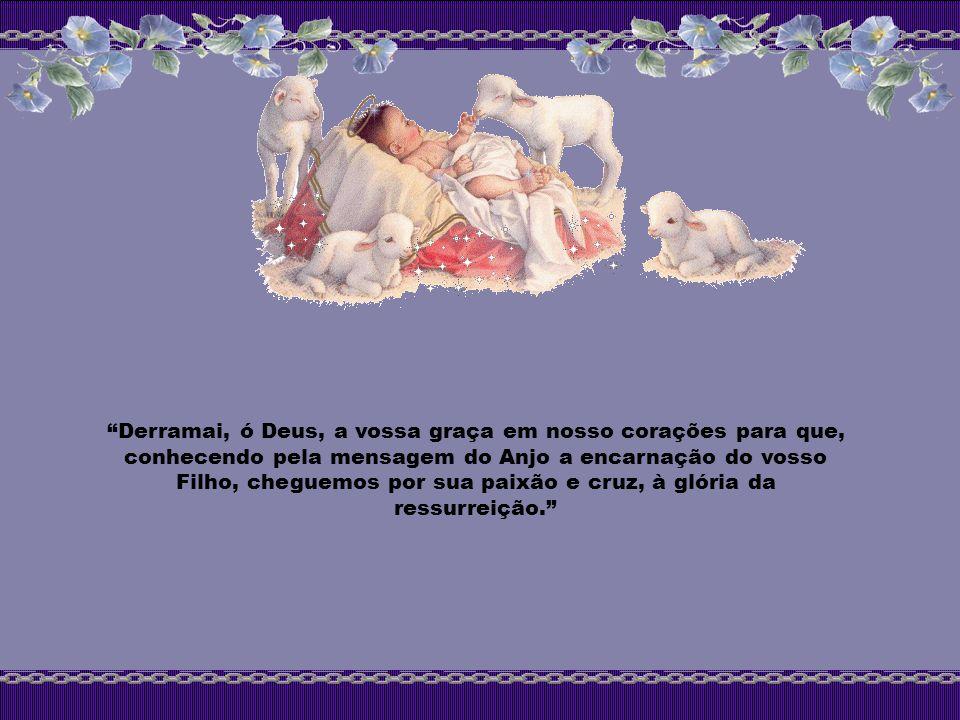 Derramai, ó Deus, a vossa graça em nosso corações para que, conhecendo pela mensagem do Anjo a encarnação do vosso Filho, cheguemos por sua paixão e cruz, à glória da ressurreição.