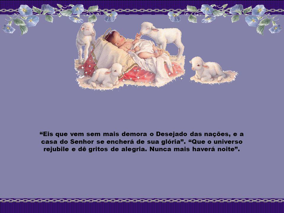 Eis que vem sem mais demora o Desejado das nações, e a casa do Senhor se encherá de sua glória.