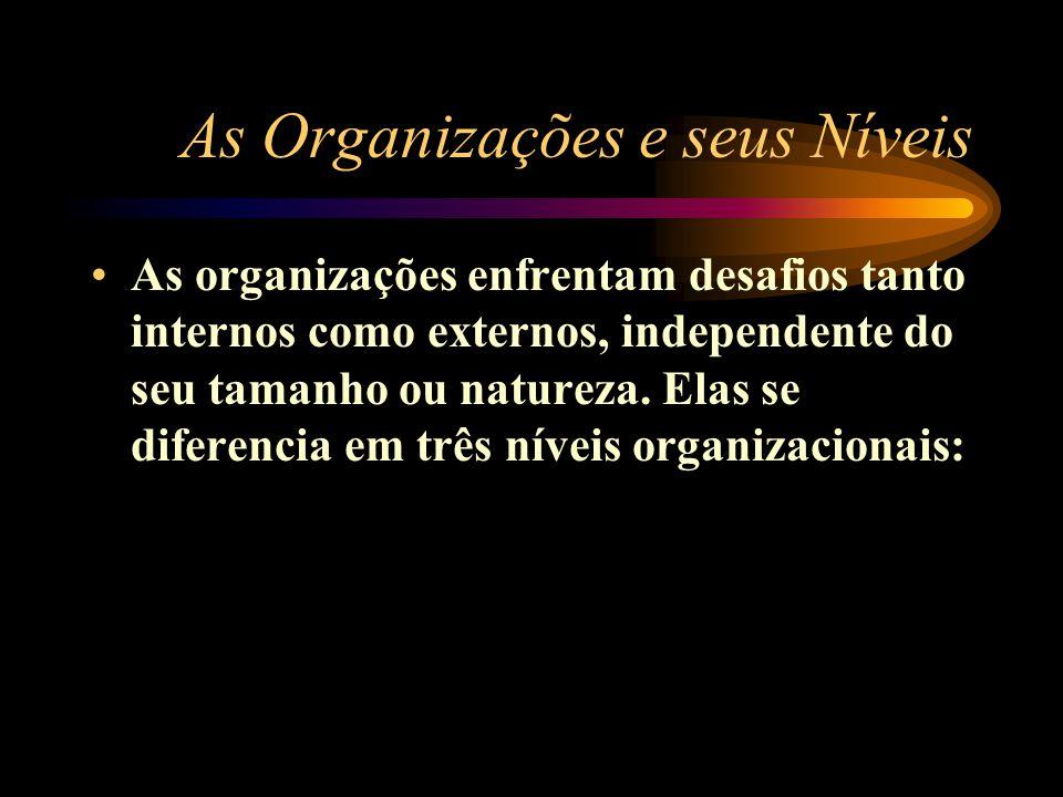 As Organizações e seus Níveis As organizações enfrentam desafios tanto internos como externos, independente do seu tamanho ou natureza. Elas se difere