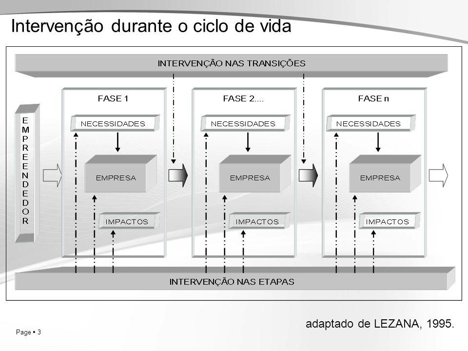 Page 3 Intervenção durante o ciclo de vida adaptado de LEZANA, 1995.