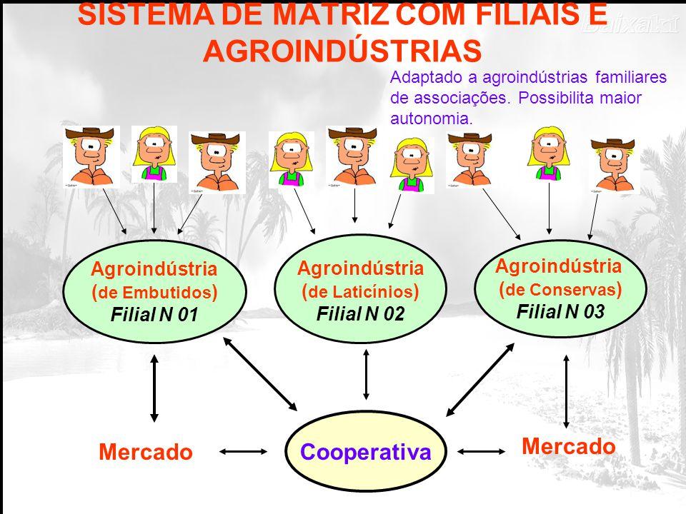 SISTEMA COM MATRIZ E AGROINDÚSTRIAS COOPERATIVA Mercado/Terceiros Embutidos Conservas Açúcar Mascavo Sucos Panificação Adaptado para agroindústrias fa