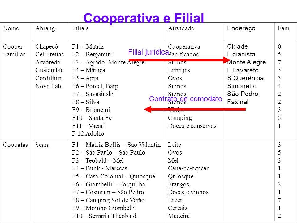 SISTEMA DE MATRIZ COM FILIAIS E AGROINDÚSTRIAS Agroindústria ( de Embutidos ) Filial N 01 Agroindústria ( de Laticínios ) Filial N 02 Agroindústria (