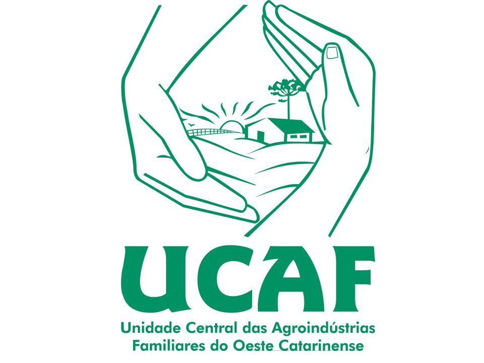 Fazer a contabilidade das agroindústrias Apoiar na gestão das agroindústrias Apoiar as novas agroindústrias fornecendo projetos (técnicos e arquitetôn